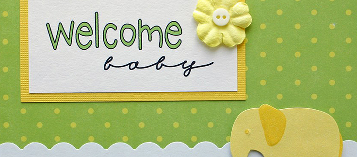 Sip and See Baby Shower Theme