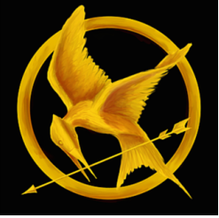 Hunger Games Birthday Party Ideas to Pin Right Now