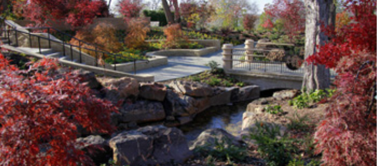 Venue Spotlight: The Dallas Arboretum
