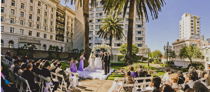 Urban Oasis Wedding