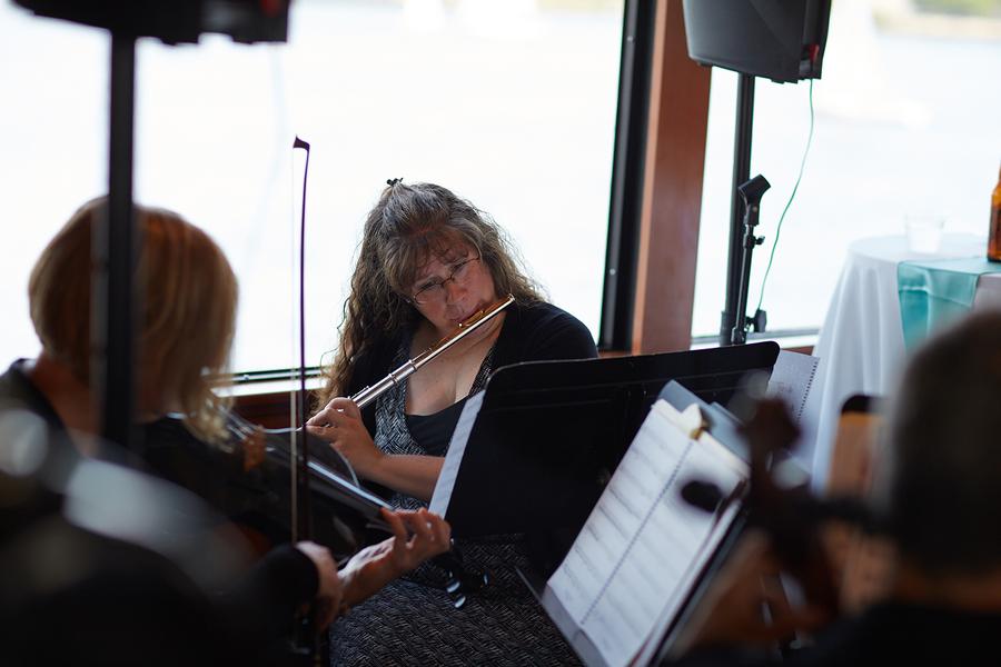 Violinist at wedding reception