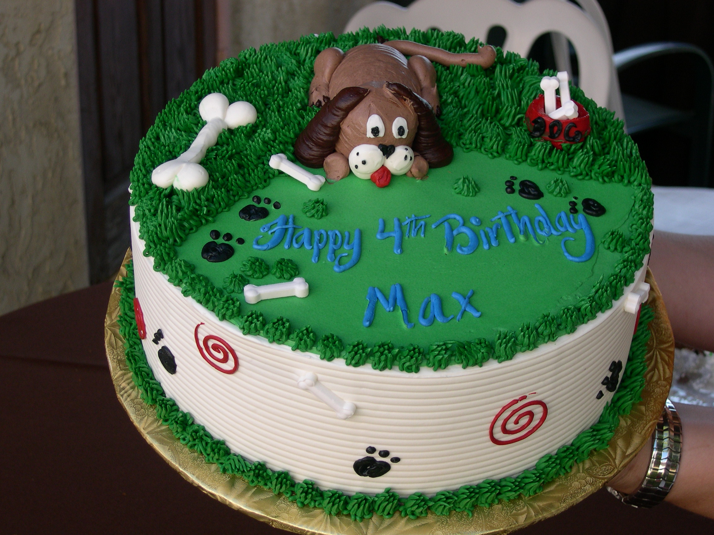 A Birthday Party For One Lucky Dog