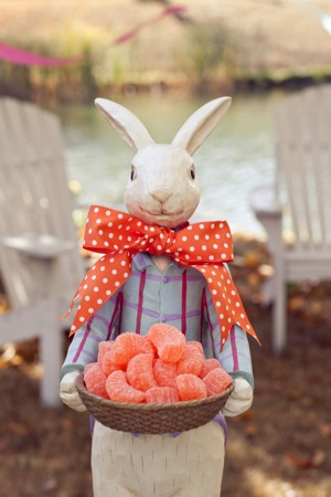 bunny with sweets