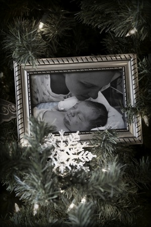 Christmas tree branch with baby photo