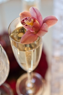 flower in champagne glass