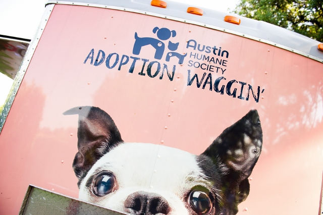 bus for animal shelter