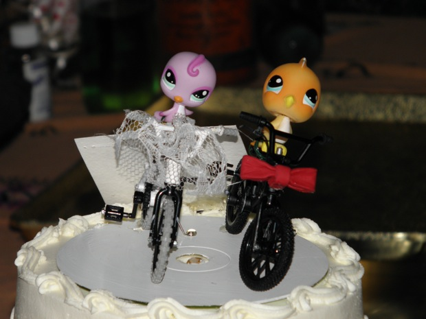 cake topper with littlest pet shop birds