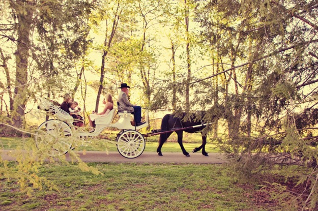 wedding with horse drawn carriage