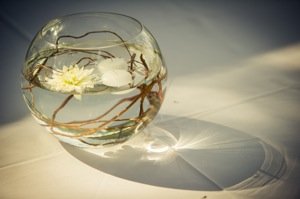 glass bowl with floating flowers