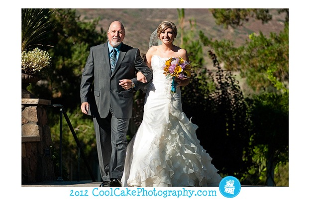 father of the bride walks bride down the aisle