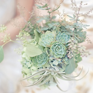 green succulent bridesmaid bouquet