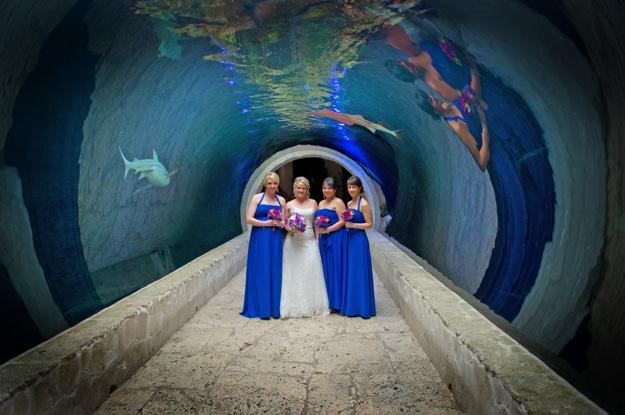 bridesmaids in blue dresses in shark tank