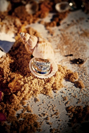 wedding rings displayed in sand and shells