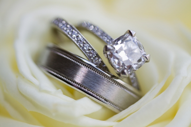platinum wedding rings nestled in white rose